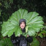 Posing with a giant leaf, Volcan Poas