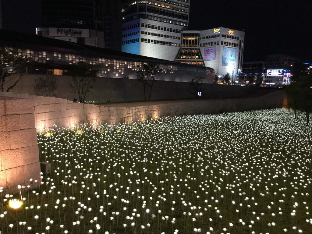 LED roses, Dongdaemun, Seoul