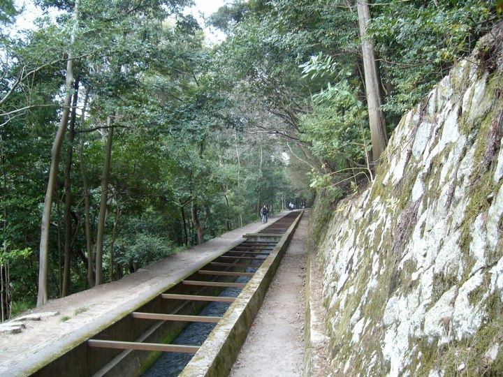 The forest path to Nanzen-ji