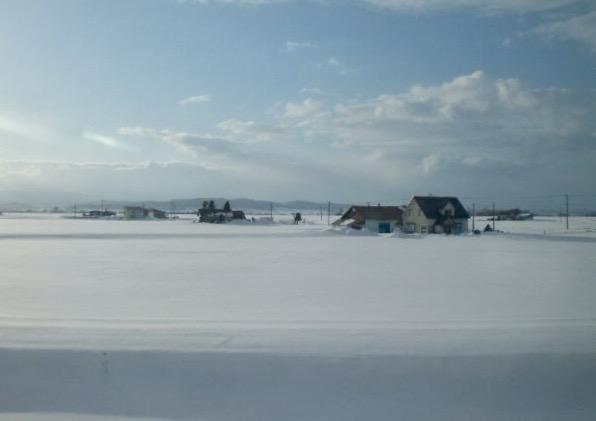 Fields of snow in Hokkaido