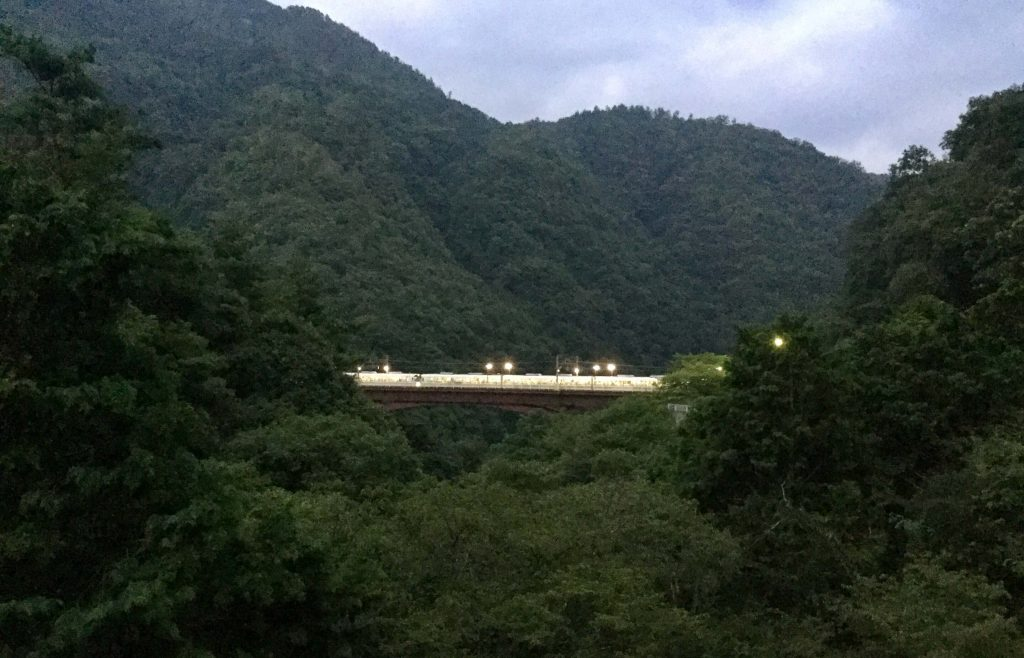 A train stopped at Hozukyo Station