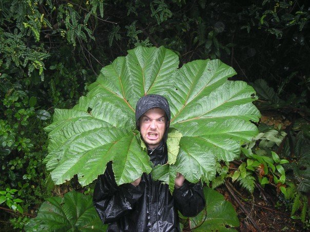 Posing with an enormous leaf in Costa Rica