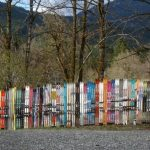 A fence composed of skis next to the Mt Baker road