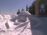 Snow octopus, Cypress Mountain
