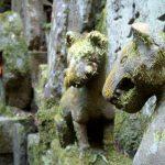 Fox guardians at Fushimi inari, Kyoto