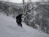 Off-piste tree skiing at Rusutsu