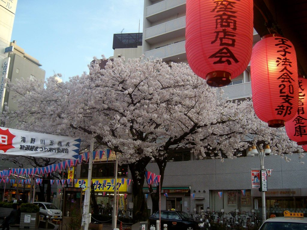 Cherry blossoms in front of Itabashi station