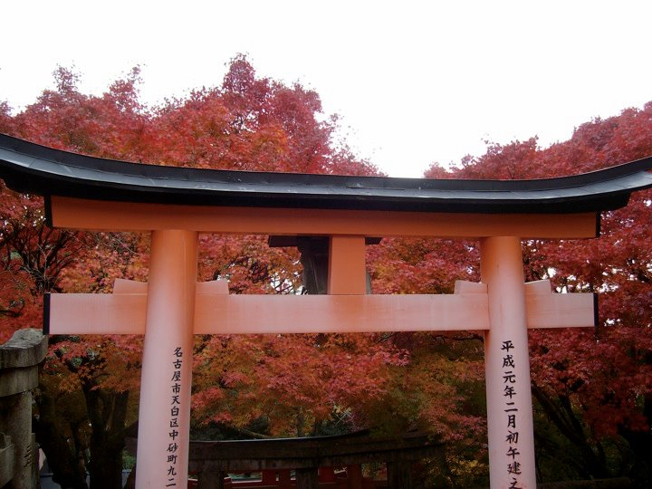 Autumn colours at Fushimi Inari