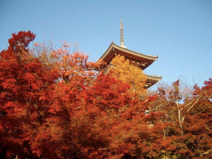 Kiyomizudera autumn colours