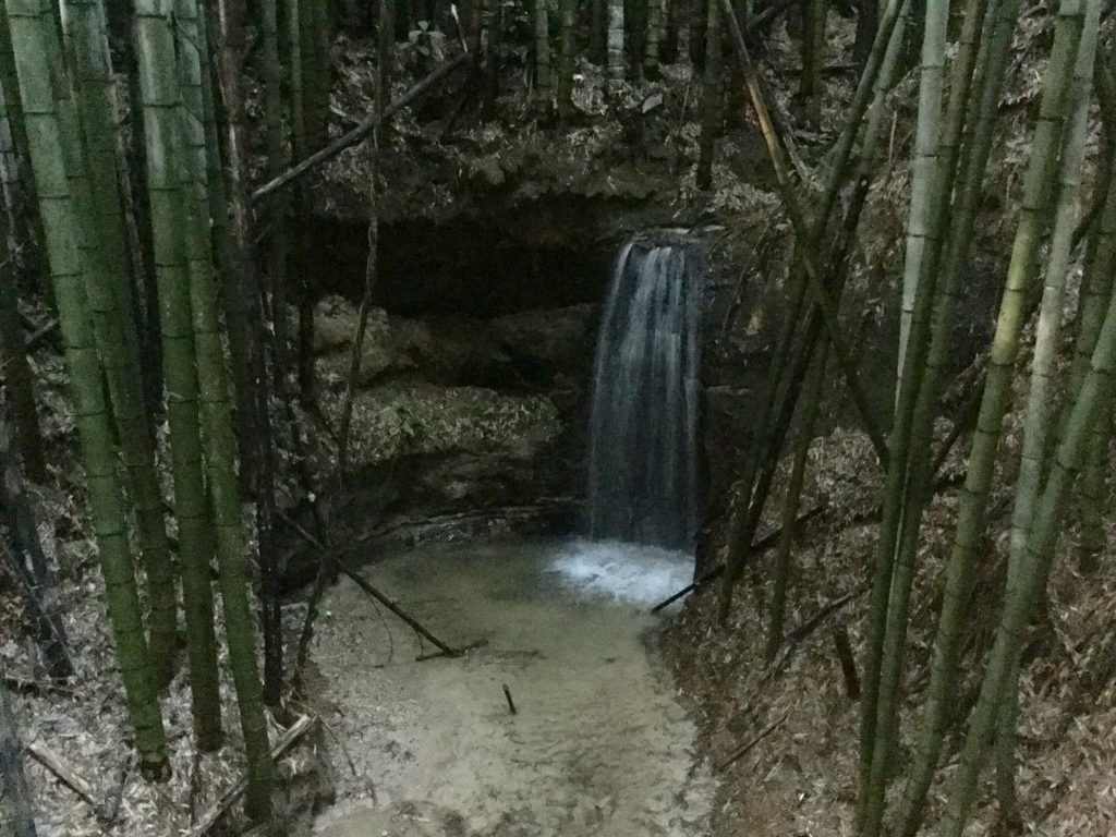 Waterfall in Fushimi bamboo forest