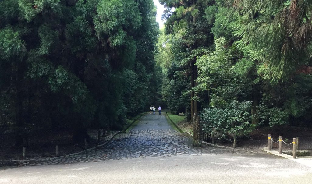 Forest path near the Meiji mausoleum