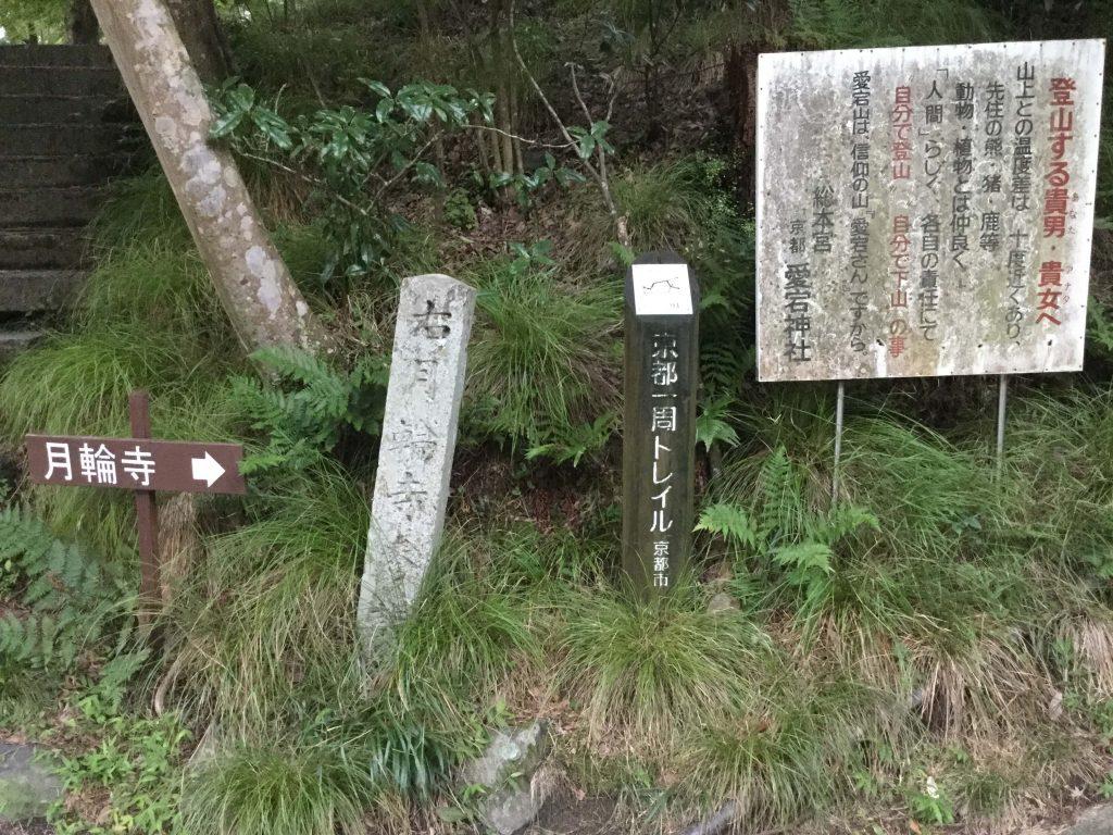 Kitayama Nishibu trail board 94 in Kiyotaki