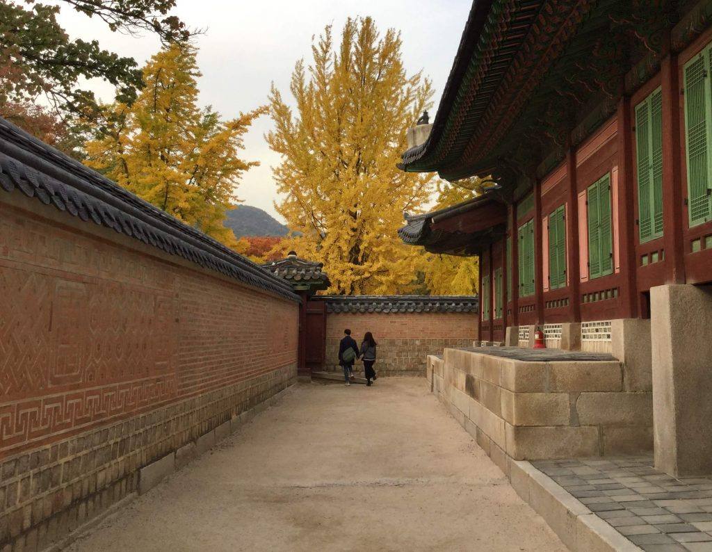 Seoul autumn colours at Gyeongbokgung Palace