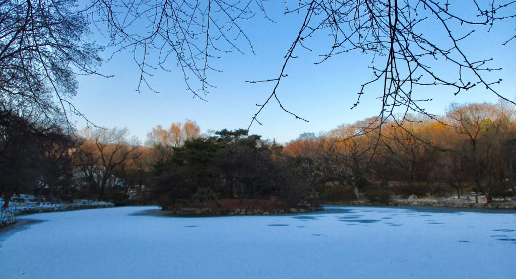 Frozen pond at Changgyeonggung