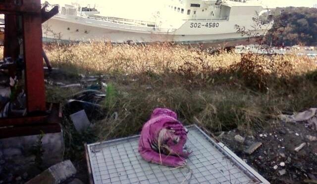 Tsunami debris in Ishinomaki