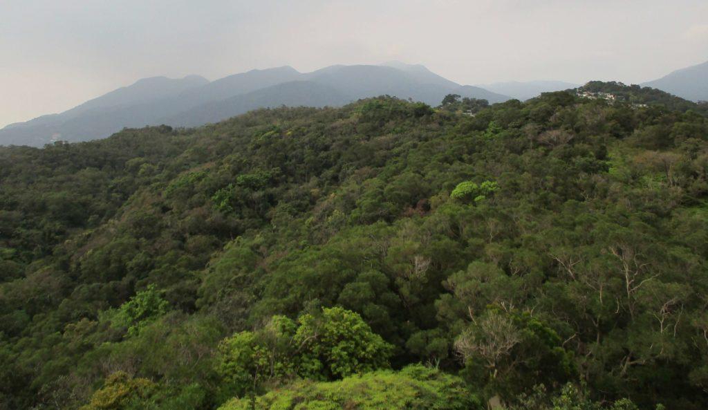 Views from Battleship Rock