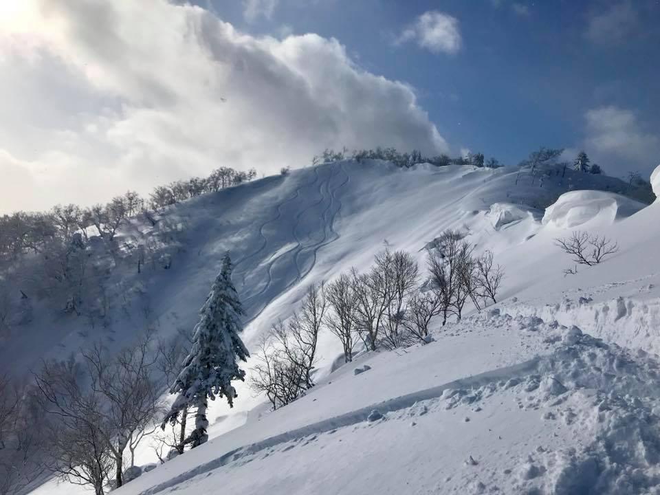 Hokkaido powder at Furano
