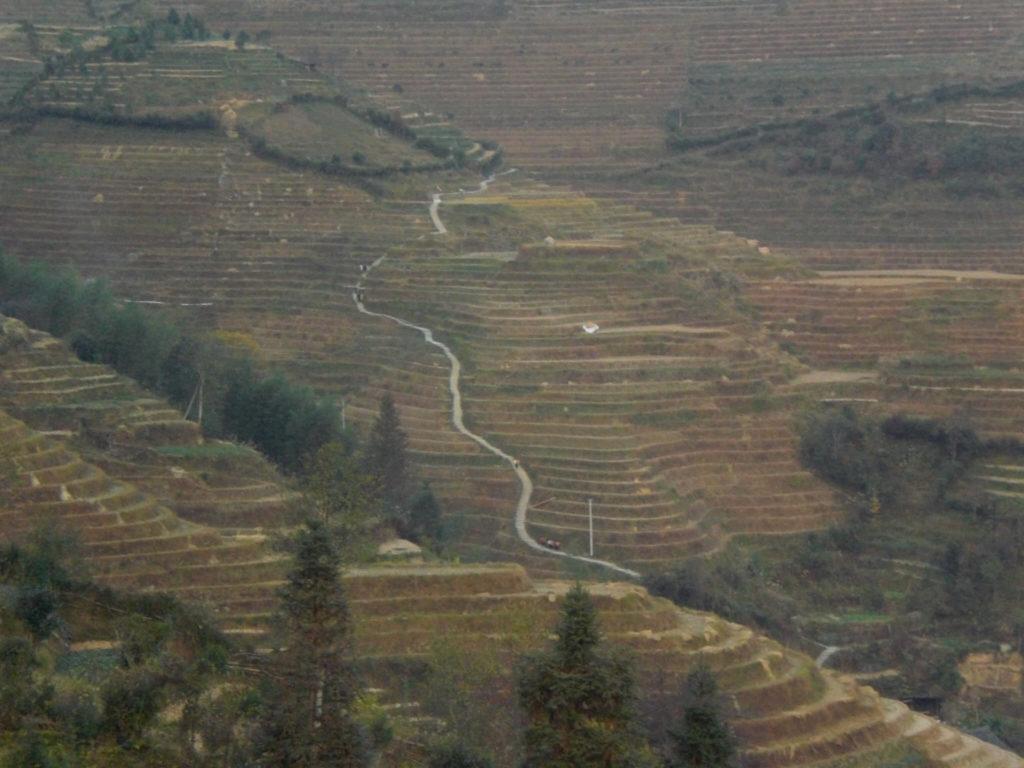 Amazing scenery at Longsheng Rice Terraces