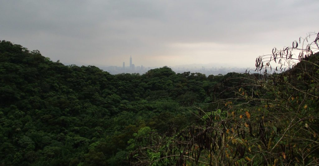 View of Taipei 101 from Yuanjue Temple