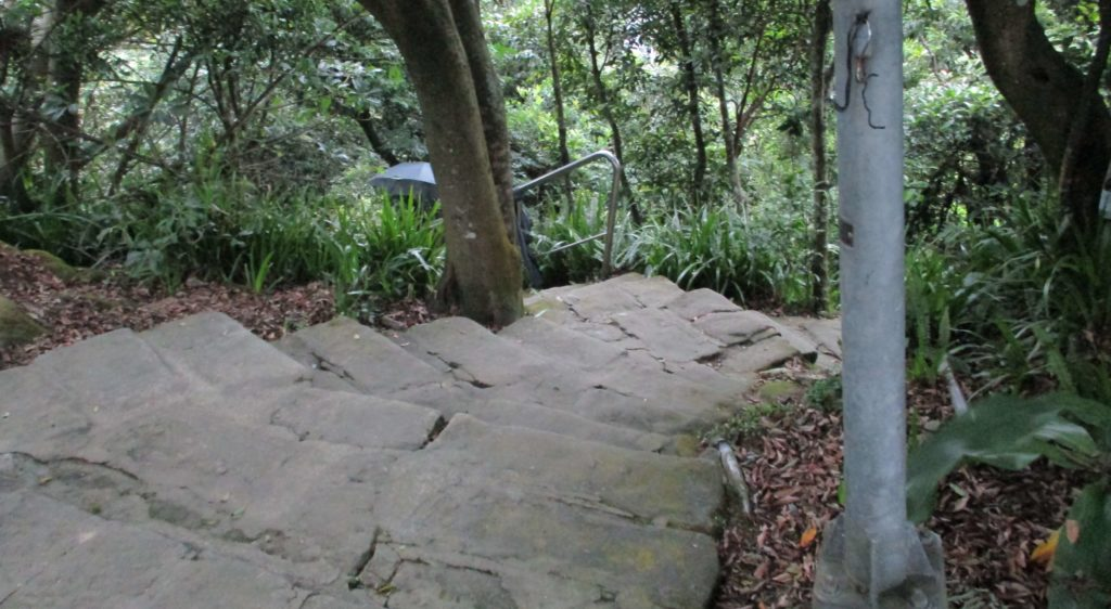 Hiking trail from Zhongyongshan to Jinlong Agricultural Road