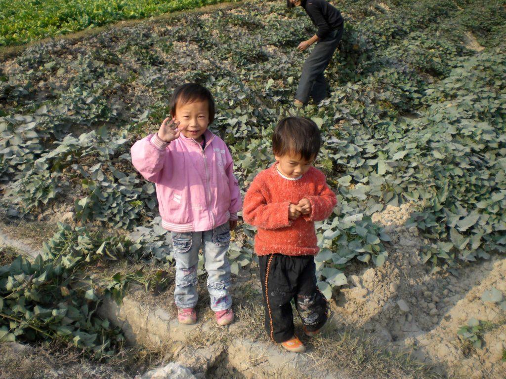 Hiking in Yansghuo