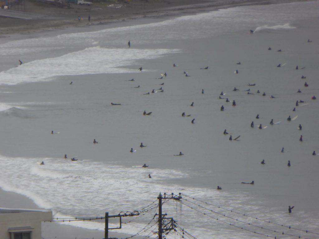 Kamakura surfers