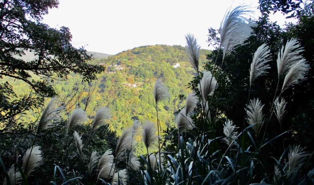 Views from the Shamaoshan trail