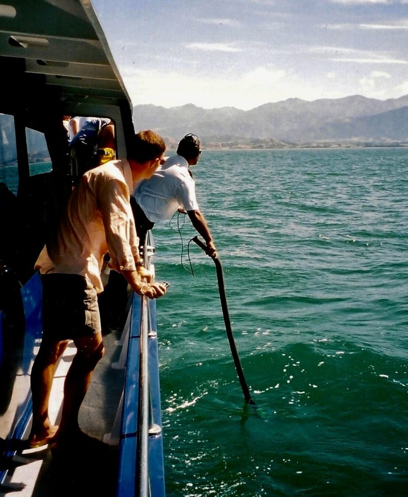 Boat crew using sensors to detect sperm whales